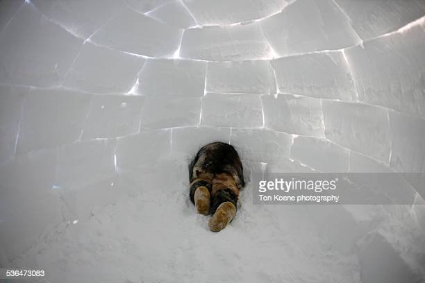 Inuit boy in an iglo