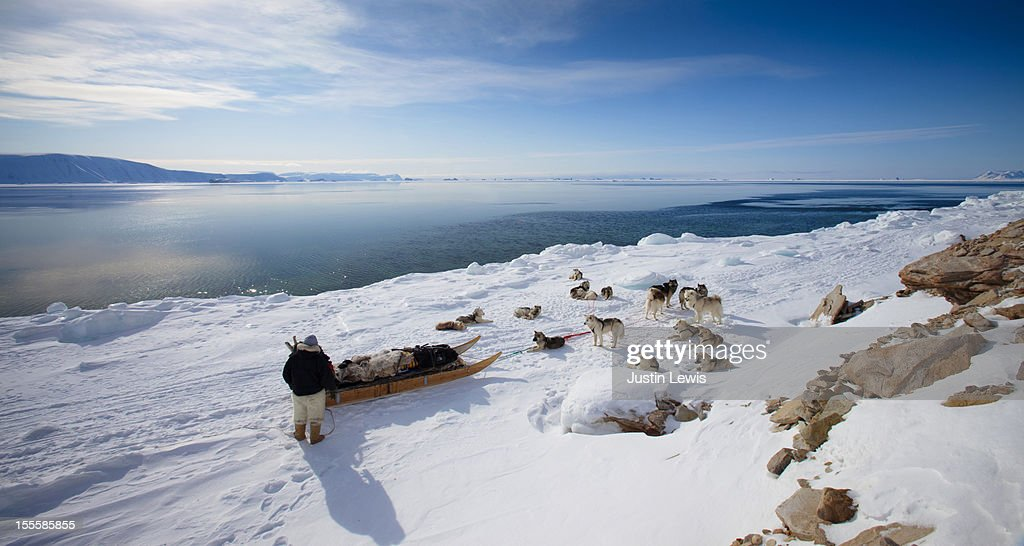 Inuit man with his sled dogs looking at ocean : Stock Photo