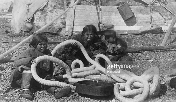 Inuit women and girls with long coils of walrus gut They are in front of a tent