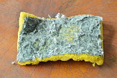 invalid green and yellow scrub sponge on wooden board