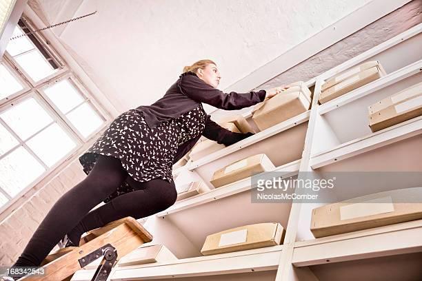 Inventaire femme travailleur sur une échelle
