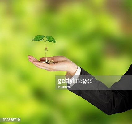 Investing to green business : Stock Photo