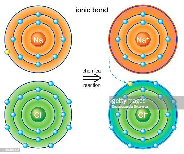 Ionic Bond An Ionic Bond Stems From The Transfer Of Electrons From One Atom To Another The Resulting Ions Form A Stable Molecule