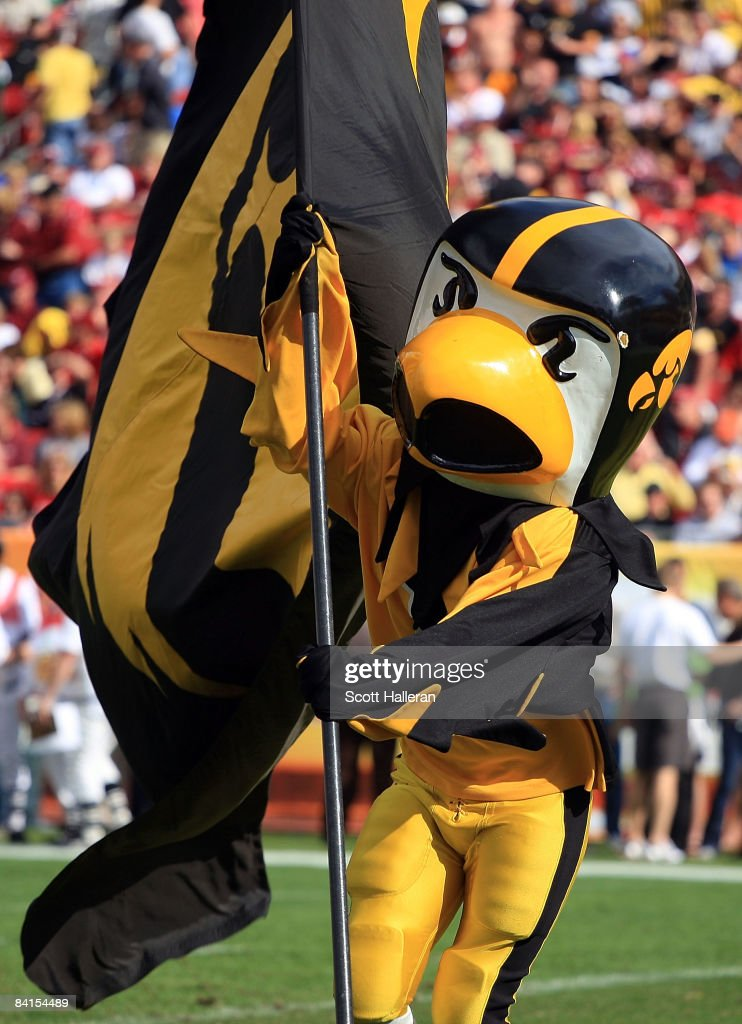 Iowa Hawkeye mascot Herky celebrates a touchdown run against the South Carolina Gamecocks during the Outback Bowl on January 1, 2009 at Raymond James Stadium in Tampa, Florida.