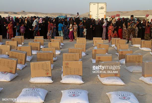 Iraqis displaced from Ramadi wait to receive aid from the International Committee of the Red Cross at a makeshift camp where they are taking shelter...