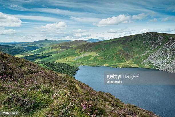 Ireland, County Wicklow, view to Lough Tay at Wicklow Nationalpark