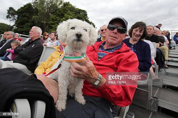 Ireland fans and a dog watch the ICC World Twenty20 Qualifer between Ireland and the Netherlands at Malahide cricket club north of Dublin on July 25...