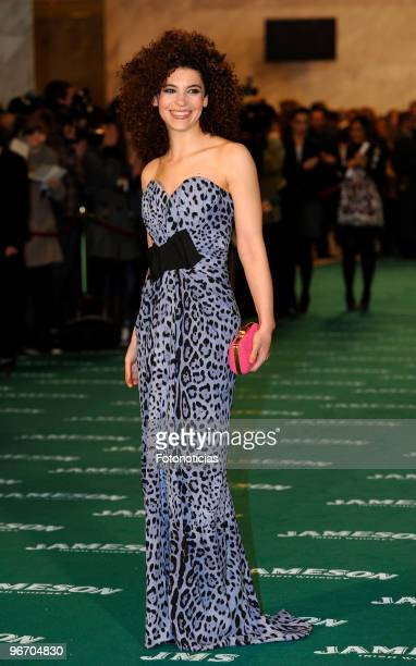 Irene Visedo arrives to the 2010 edition of the 'Goya Cinema Awards' ceremony at the Palacio de Congresos on February 14 2010 in Madrid Spain