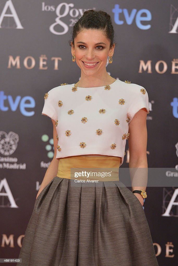 Irene Visedo attends Goya Cinema Awards 2014 at Centro de Congresos Principe Felipe on February 9, 2014 in Madrid, Spain.