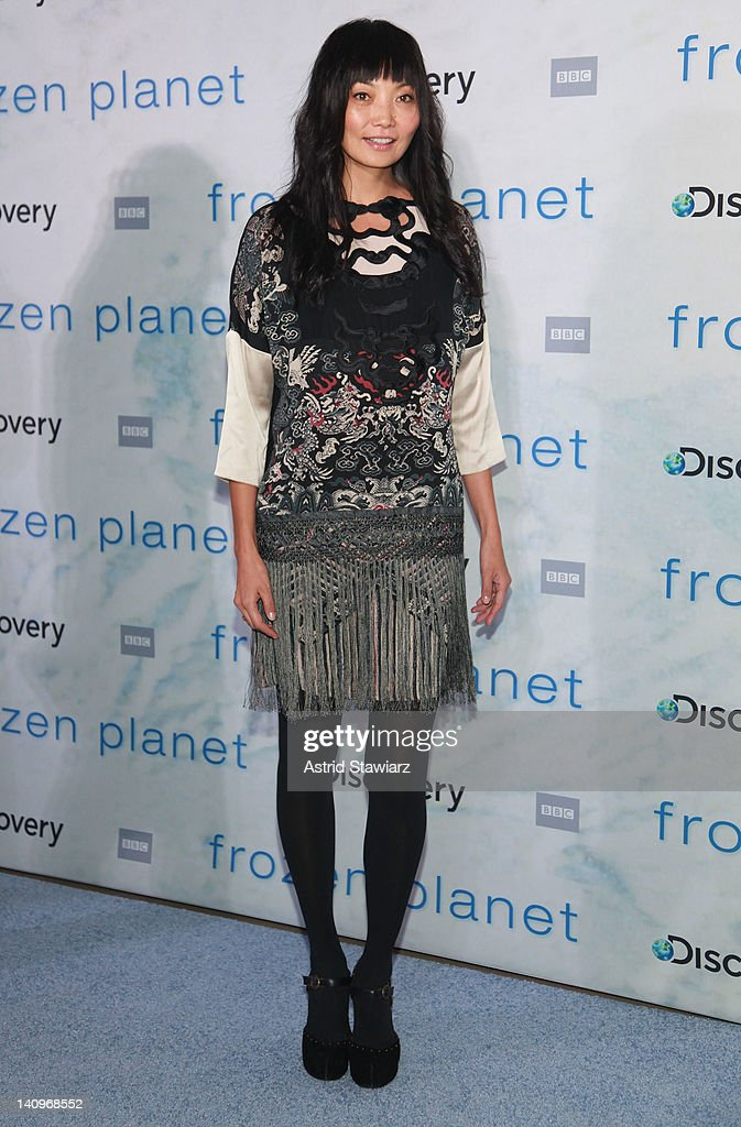 <a gi-track='captionPersonalityLinkClicked' href=/galleries/search?phrase=Irina+Pantaeva&family=editorial&specificpeople=204164 ng-click='$event.stopPropagation()'>Irina Pantaeva</a> attends the 'Frozen Planet' premiere at Alice Tully Hall, Lincoln Center on March 8, 2012 in New York City.