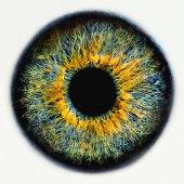 Iris of eye, close-up (Digital Enhancement)