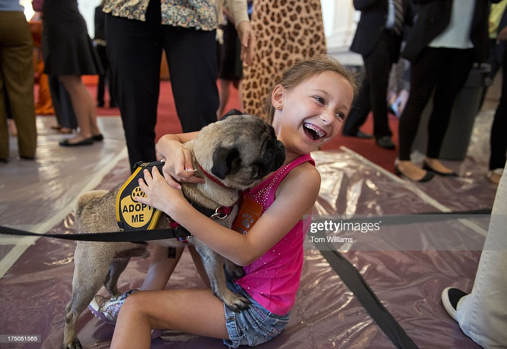 Iris Zola, 9, greets 'Kanye,' a pug, during an American Society for the Prevention of Cruelty to Animals and the Congressional Animal Protection Caucus event in Cannon Building. The second annual 'Paws for Celebration!' was held to bring attention to animals up for adoption and recognize the work of rescue organizations.