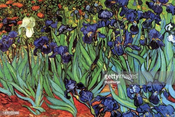 Irises 1880 By Vincent Van Gogh