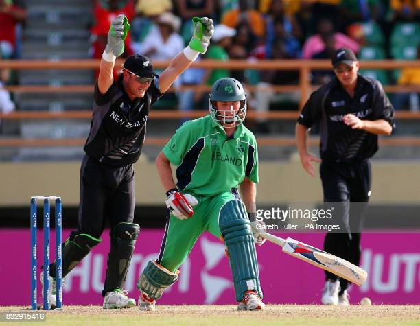 Irish batsman Andrew White looses his wicket to New Zealand's Danial Vettori as wicketkeeper Brendon McCullum celebrates during the ICC Cricket World...