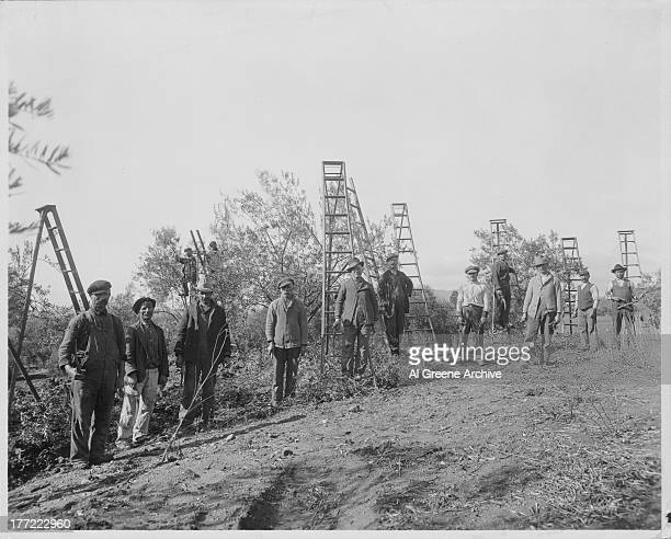 Irish farmers and agricultural workers clearing farmland Ireland circa 19201950