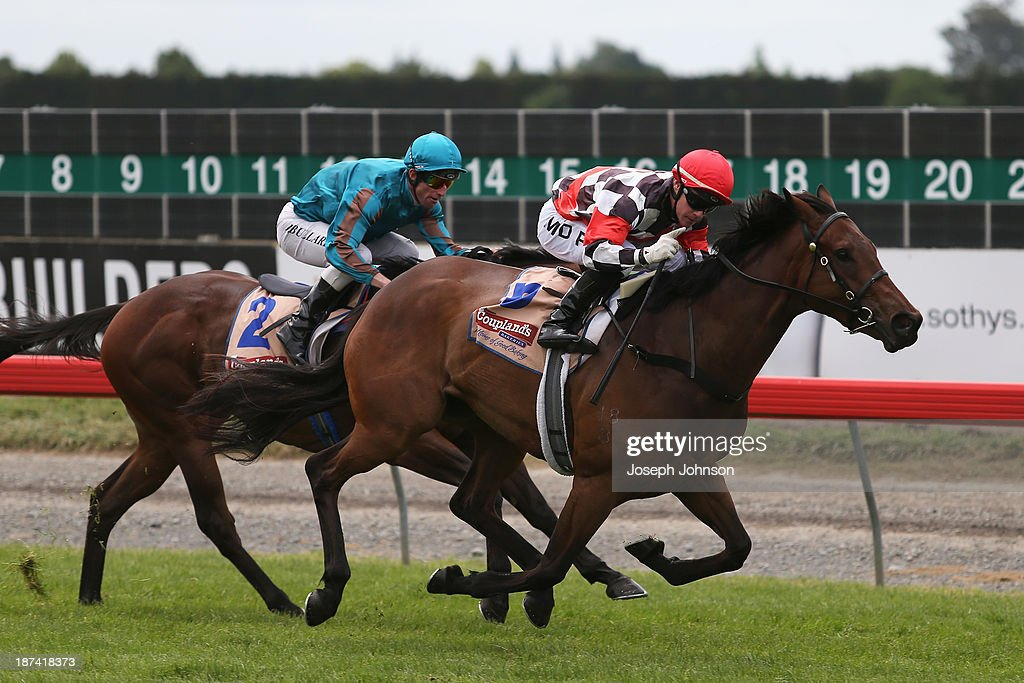 Irish Fling with jockey Mark Du Plessis wins the Yesberg Insurance Services Pegasus Stakes ahead of King Montrose with jockey Jamie Bullard in second during New Zealand 2000 Guineas Day on November 9, 2013 in Christchurch, New Zealand.