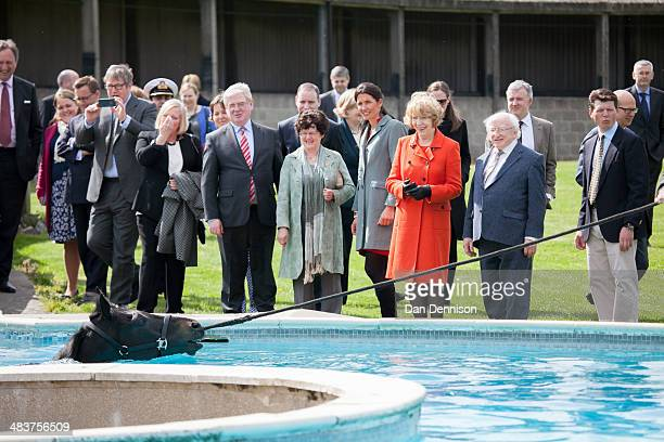 Irish President Michael D Higgins stands with his wife Sabina Higgins watching a horse in a equine bathing pool at the Kingsclere Park House Stables...