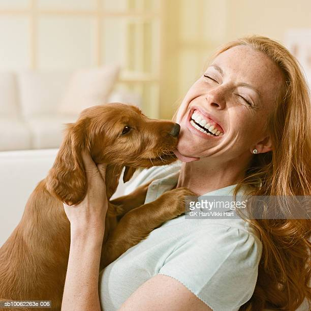 Irish setter puppy licking woman's face