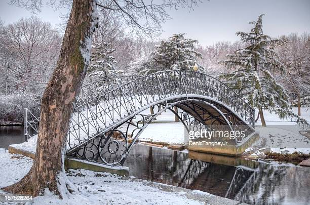 Iron Bridge covered in Snow