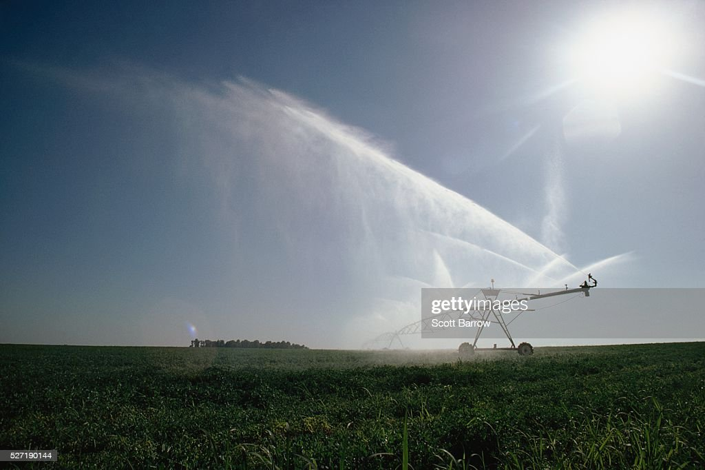 Irrigating a field : Foto de stock