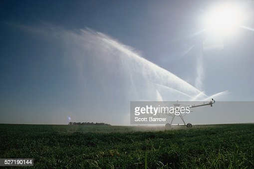 Irrigating a field : Photo
