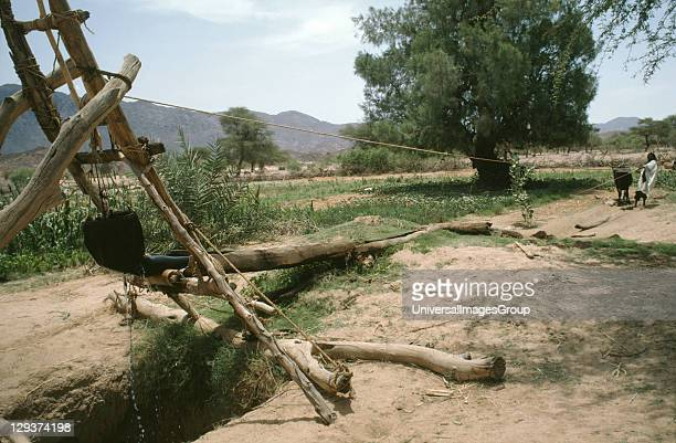 Irrigation Niger Tahoua Village Drawing Water From A Well To Irrigate Crops