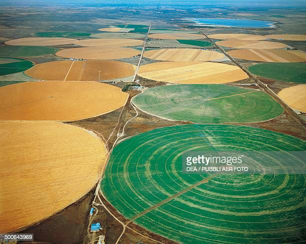 Irrigation of wheat fields north of Denver aerial view Colorado United States of America