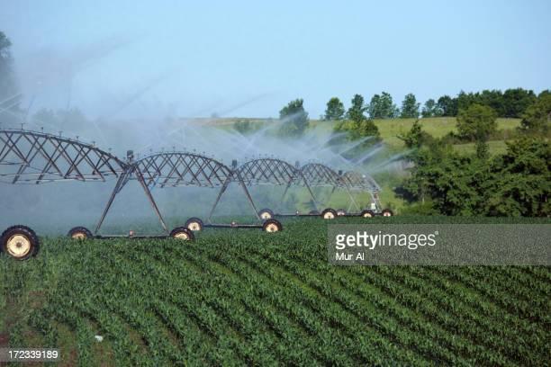 Tuyaux d'Irrigation