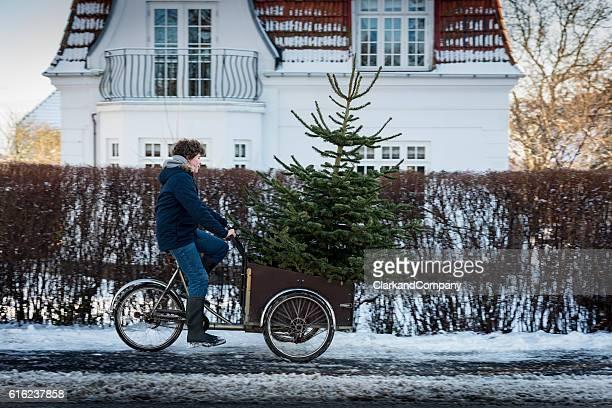 Is This Christmas Tree Big Enough?