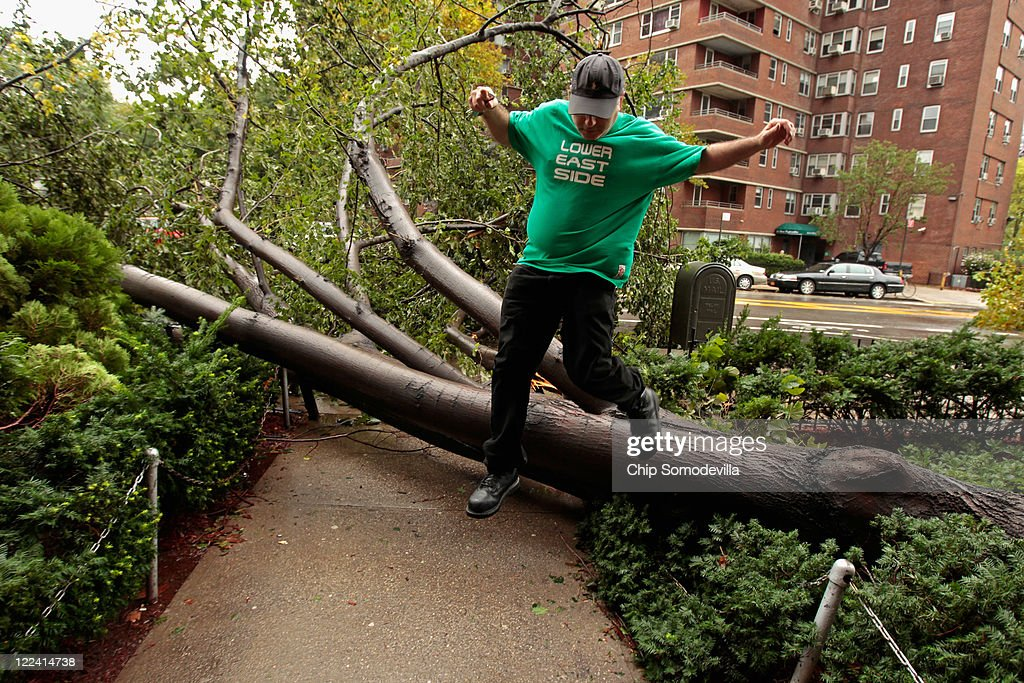 Isaac Krinsky steps over one of five trees knocked over by high winds from Hurricane Irene in front of the East River Cooperative Village apartment buildings along Grand Street August 28, 2011 in New York City. The hurricane hit New York as a Category 1 storm before being downgraded to a tropical storm.
