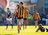 Isaac Smith of the Hawks celebrates kicking a goal during the round 20 AFL match between the Hawthorn Hawks and the Port Adelaide Power at Aurora...