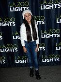 LA Zoo Lights VIP Night