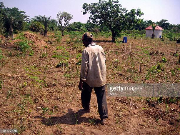 Isabelle LIGNER Paulin Dansou HIV positive walks in a Moringa field belonging to the Apevivis association in Kpomasse 30 November 2007 The...