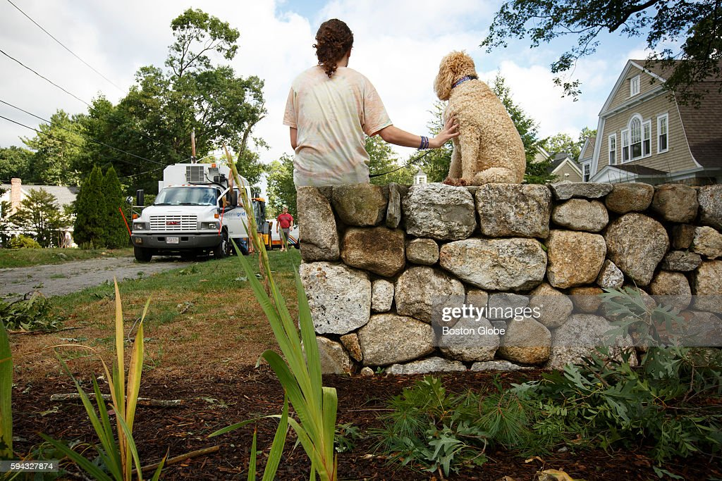 Isabelle Mone and her dog Jasper take in the damage and crew response on Independence Road in Concord Mass on Aug 22 after early morning severe...