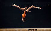 Isabelle Stingl of TG Karlsruhe Soellingen competes on the Beam during the Women's DTL Finals 2015 at Messehalle 2 on December 5 2015 in Karlsruhe...