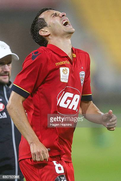 Isaias of Adelaide United reacts after sustaining an injury during the round 13 ALeague match between Wellington Phoenix and Adelaide United at...