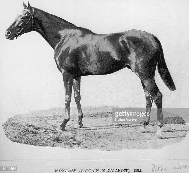 Isinglass winner of the 1892 St Leger Stakes and the 1893 Derby 1893