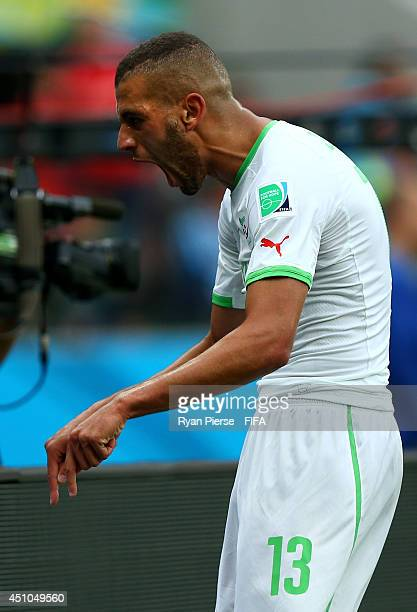 Islam Slimani of Algeria celebrates scoring his team's first goal during the 2014 FIFA World Cup Brazil Group H match between Korea Republic and...