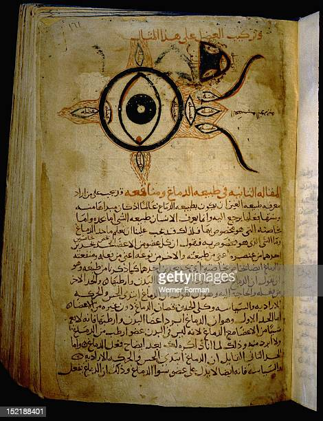 Islamic medical manuscript Sketch of the eye Egypt Islamic Mamluk 14th c