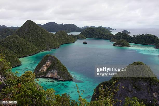 Island in Raja Ampat
