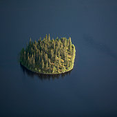 Island on dark lake, aerial view
