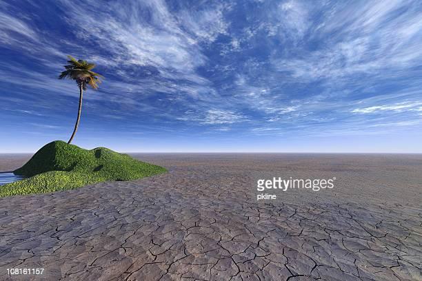 Insel palm Baum in der Wüste ausgetrocknete