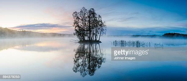 Island with trees on lake, dusk