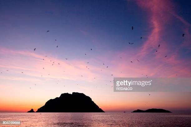 Isola Piana Isola Tavolara Loiri Porto San Paolo Sardinia Italy Europe