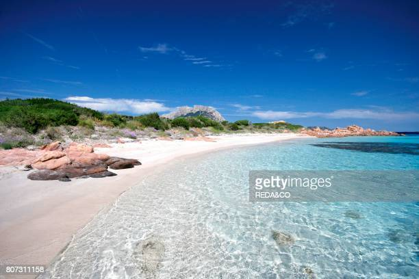 isola piana Loiri Porto San Paolo Sardinia Italy Europe