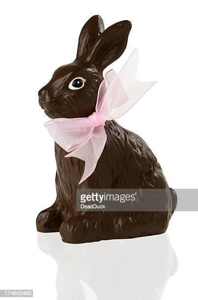 Isolated chocolate bunny