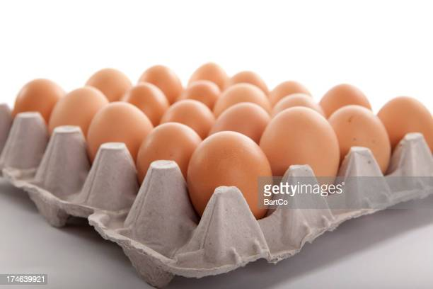 Isolated eggs.
