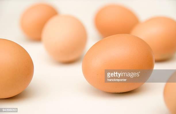 isolated eggs