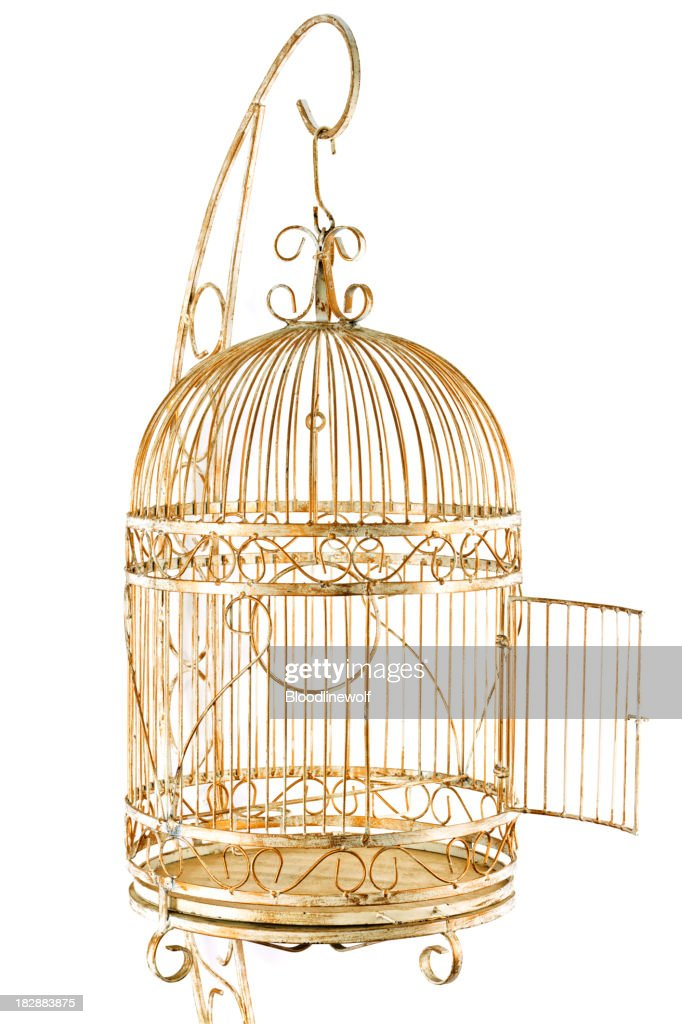 Isolated Gold Cage : Stock Photo