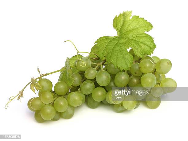 isolated grape